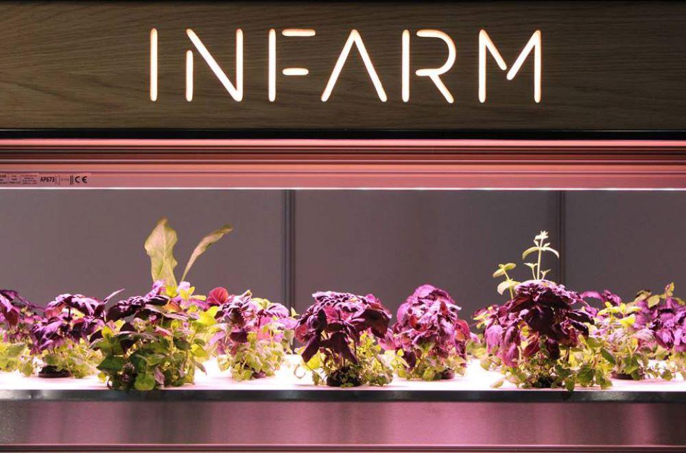 um novo conceito de comida plantada nas grandes cidades