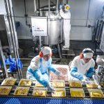 carne cultivada em laboratório é aposta da brf